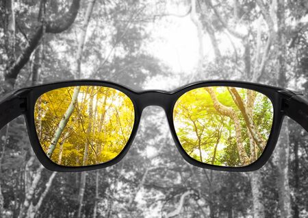 Glasses with forest, selected focus on lens, colour blindness glasses 스톡 콘텐츠