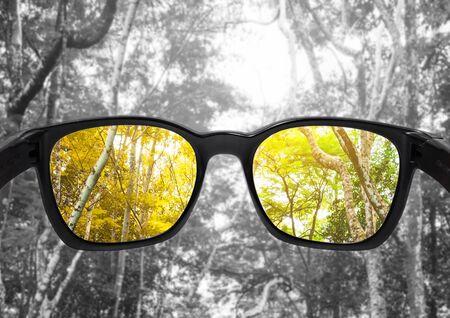 Glasses with forest, selected focus on lens, colour blindness glasses Foto de archivo