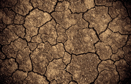 Dried cracked earth soil ground texture background. Mosaic pattern of sunny dried earth soil Imagens