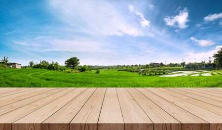Wooden terrace with green rice field and blue sky in the morning