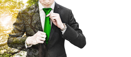 Double exposure businessman tying green necktie and big tree with sunlight, on white background with copy space