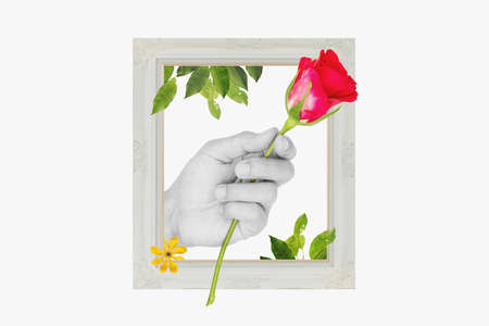 Digital collage modern art. Hand holding Red rose, with retro picture frame, leaves and flower