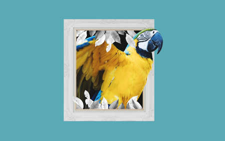 Digital collage 3D modern art, Yellow Macaw parrot, with picture frame