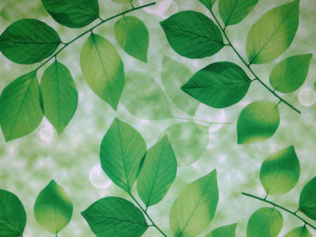 enviro: Green leaves background