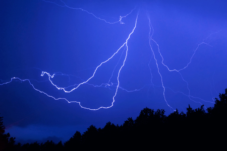 lightning in the form of a spider over the night forest. Silhouettes of trees against a background of a bright flash of lightning
