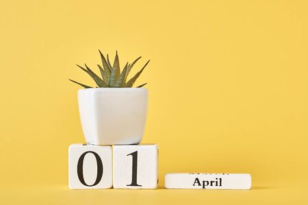 Wooden blocks calendar with date 1st april and plant on yellow background. April fools day concept Banco de Imagens