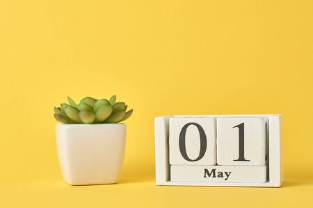 Wooden block calendar with date May 1 and succulent plant in pot on yellow background. Labor Day concept