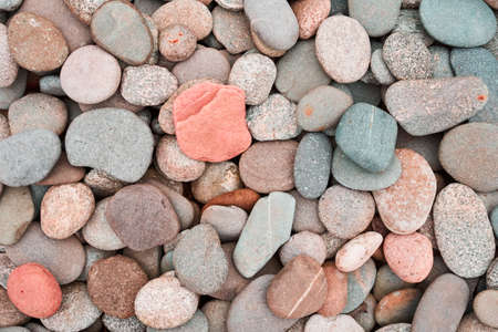 Pebbles texture. Colored round stones background