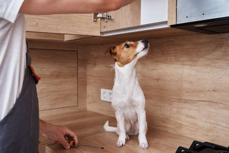 Man fixing kitchen cabinet with dog