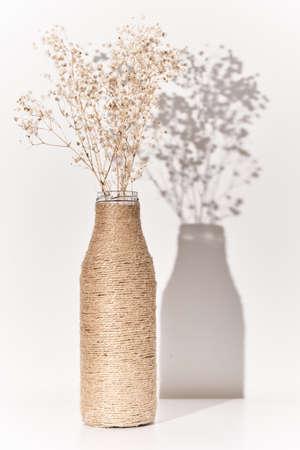 Plant branch in handmade vase with shadows. Modern interior design concept. Minimal style Archivio Fotografico
