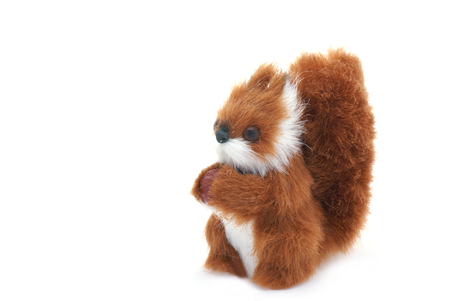 plushy: Cute plushy squirrel in front of a white background.