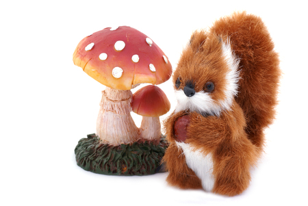 An isolated squirrel and toadstool next to eachother.             photo