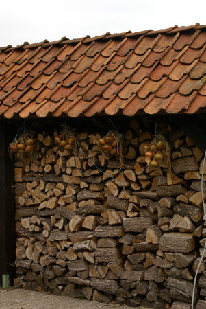 woodshed: Onions drying under a wood-shed roof.