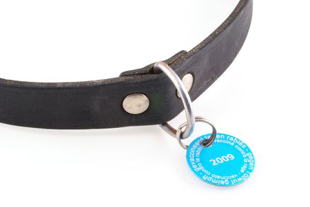 Dogs collar with vaccination tag from 2009; isolated on white.