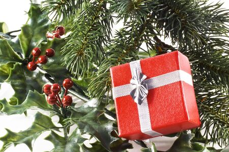 Red gift box on a christmas tree branch and holly; on a white background. Stock Photo - 5922913