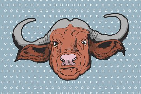 bison: Buffalo - American Bison Vector hand-drawn illustration