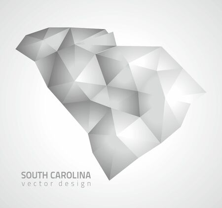savour: South Carolina gray shadow vector polygonal mosaic map of America Illustration