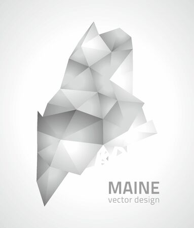 Maine polygonal gray shadow shadow 3d vector maps Vektorové ilustrace