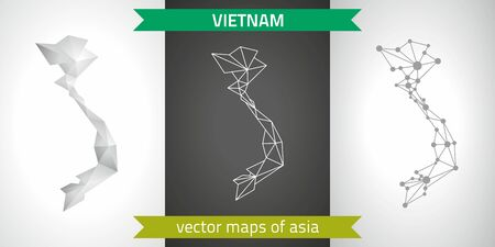 Vietnam set of gray and silver mosaic 3D polygonal maps. Graphic vector geometry triangle outline perspective shadow maps