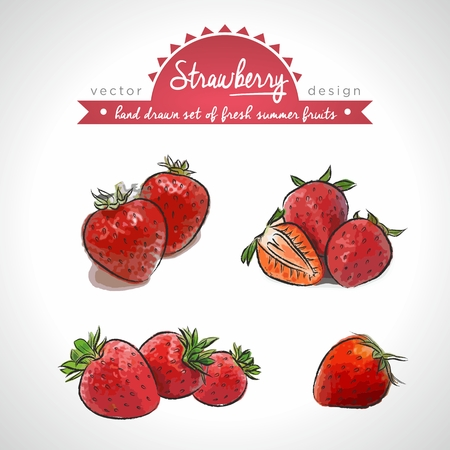 Strawberry. Vector Illustration Categories: Isolated