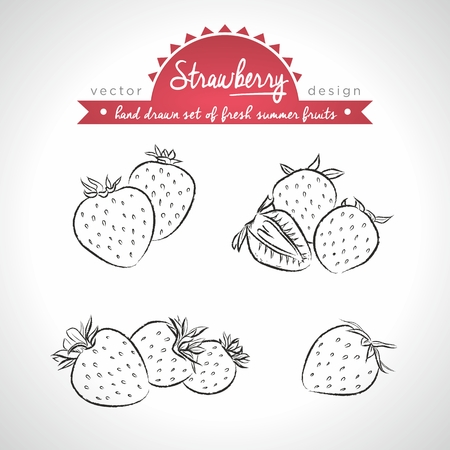 Strawberry. Set of fresh fruits, whole, half and bitten with leaf. Vector Illustration Keywords: Isolated on white background