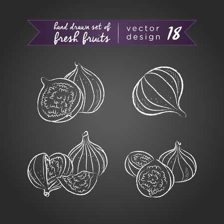 Fig. Set of fresh fruits, whole, half and bitten with leaf. Vector Illustration Keywords: Isolated on blackboard. | 向量圖像