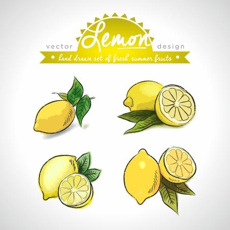 Lemon. Vector Illustration Categories: Isolated