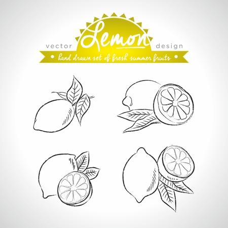 Lemon. Set of fresh fruits, whole, half and bitten with leaf. Vector Illustration Keywords: Isolated on white background