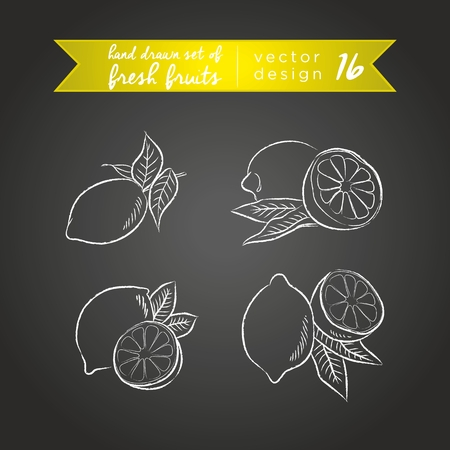 Lemon. Set of fresh fruits, whole, half and bitten with leaf. Vector Illustration Keywords: Isolated on blackboard. |