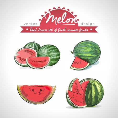 Melon. Vector Illustration Categories: Isolated 向量圖像