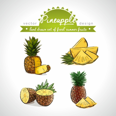 Pineapple. Vector Illustration Categories: Isolated