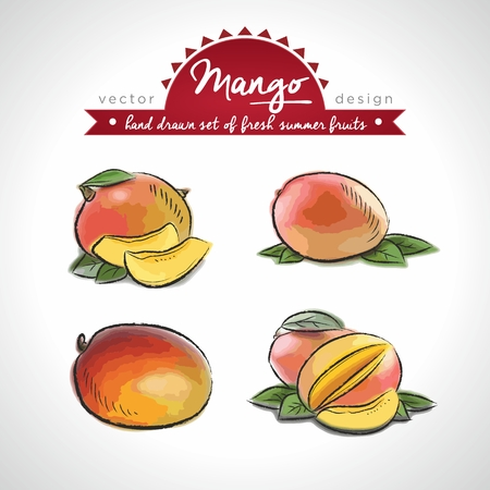 mango. Vector Illustration Categories: Isolated  イラスト・ベクター素材