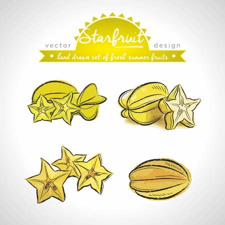 Carambola. Vector Illustration Categories: Isolated