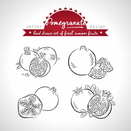 Pomegranate Collection of fresh fruits with leaf. Vector Illustration Keywords: Isolated