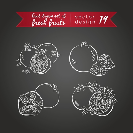 Pomegranate. Set of fresh fruits, whole, half and bitten with leaf. Vector Illustration Keywords: Isolated on blackboard. | 向量圖像