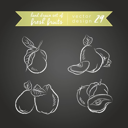 Quince. Set of fresh fruits, whole, half and bitten with leaf. Vector Illustration Keywords: Isolated on blackboard. |