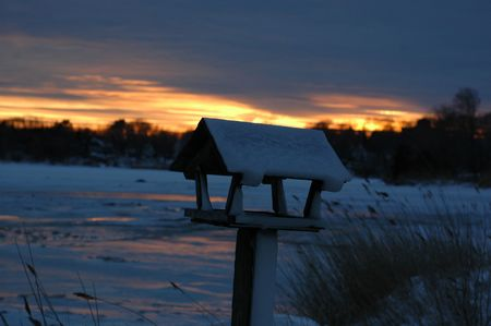 sunset in the winter with bird house