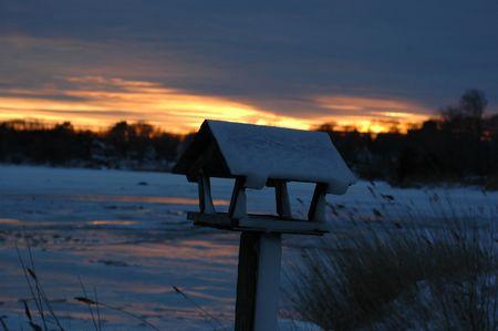 maison oiseau: sunset in the winter with bird house