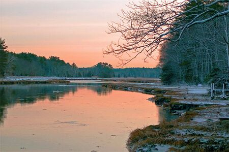 winter sunrise: a river marsh at sunset in the winter