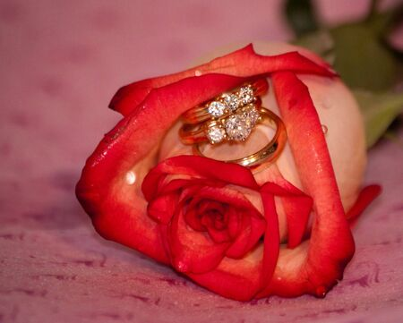 roses and 3 rings photo