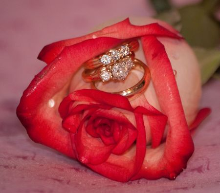 diamond ring: a single rose and 3 rings Stock Photo