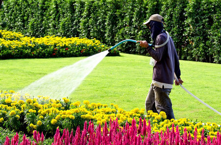 man watering green garden with a lot of flowers