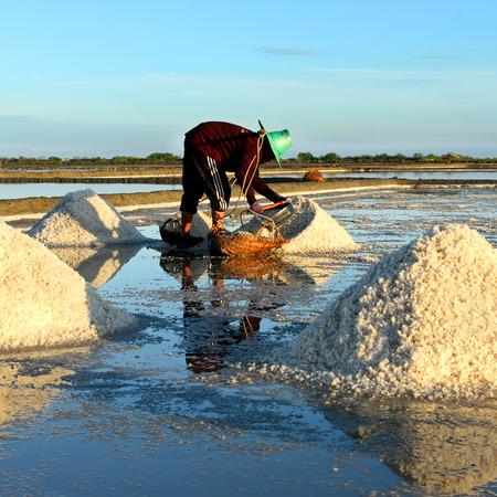 farmer evaporated the salt