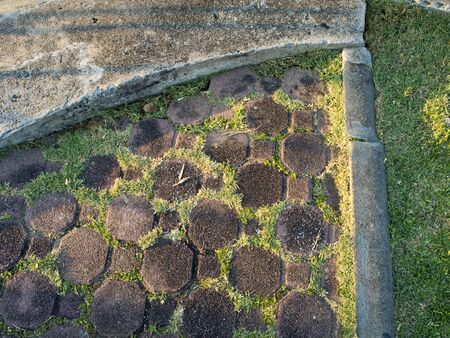 weed block: Octagon block and gutter Stock Photo