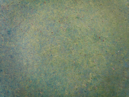polished: Texture of Green color Polished concrete floor