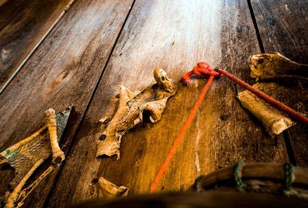 Dried carcass of the king cobra decorate at the wooden house wall