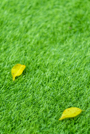 Texture of plastic artificial grass and the fall leaves by shallow depth of field Foto de archivo - 102487106