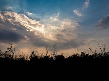 Silhouette trees and Beam of Sunlight behind dark clouds in the countryside