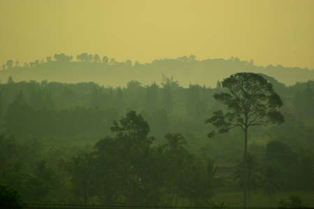 Smog and dust in the air is a pollution problem in the countryside morning