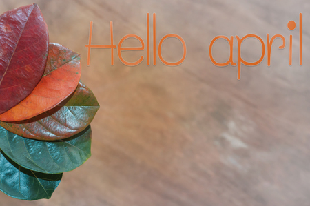Hello april text on brown wooden with Leaf color change